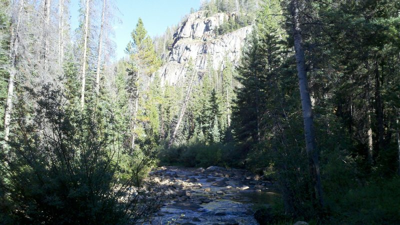 Cliffs and the River.<br> Lots of shade to hide in and climb when its hot out.