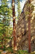 Rock Climbing Photo: Jerry moves on up towards the false summit of Bard...