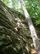 Rock Climbing Photo: Pluggin' gear