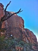 Rock Climbing Photo: Amazing crack climb