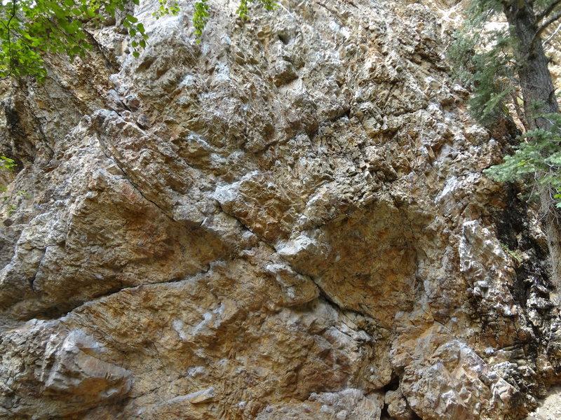 Rock Climbing Photo: the pile wall