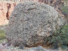 Rock Climbing Photo: Dave's Kidney Stone boulder.