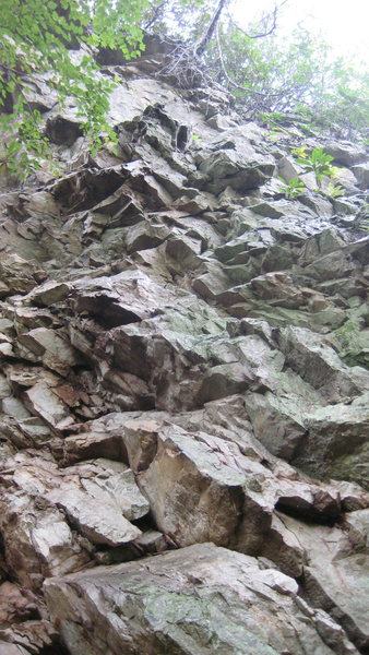 Rock Climbing Photo: Blocky, chunky, vegetated. Gross climb.