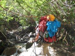 Rock Climbing Photo: 1st creek crossing