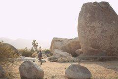 Rock Climbing Photo: Joshua Tree Climbing Trip '12 Camp Site~