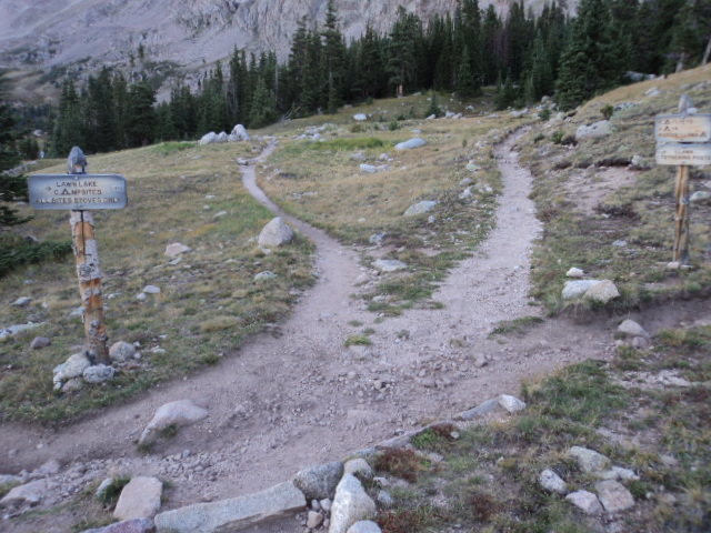 This is the only real trail route finding point on the east side of Lawn Lake.  Take the left fork of the pictured options here.  It is the 2nd from the left choice.