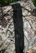 Rock Climbing Photo: Pic of Lichen Slab.  The line is right in the tree...