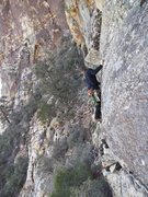 Rock Climbing Photo: Soloing about. Scout mission Jet stream wall, red ...