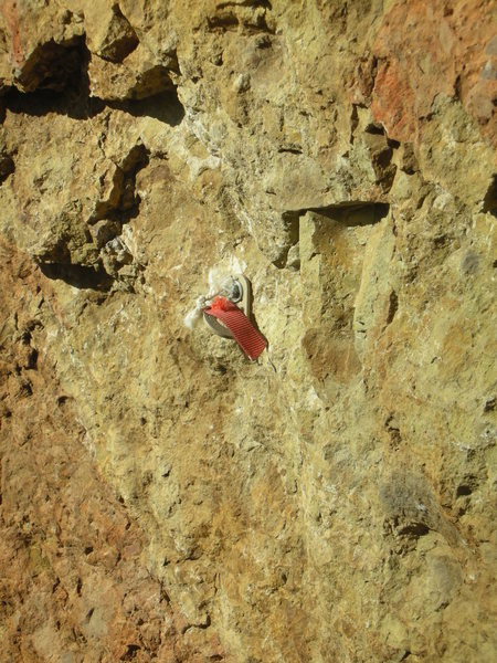 Redtagged 1st bolt on the south face of the recently closed southern most formation at The Lookout.