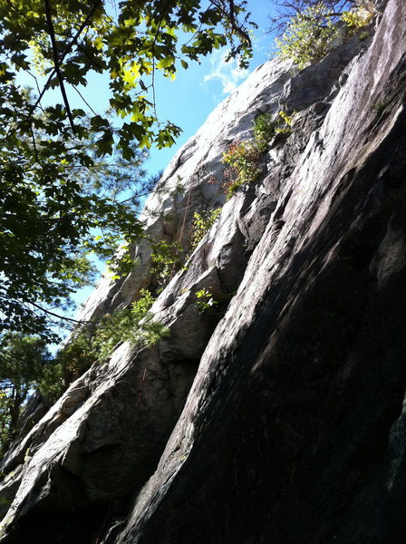 Rock Climbing Photo: Smokehouse, Nectar of the gods area. Quality route...