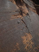Rock Climbing Photo: bottom up P11