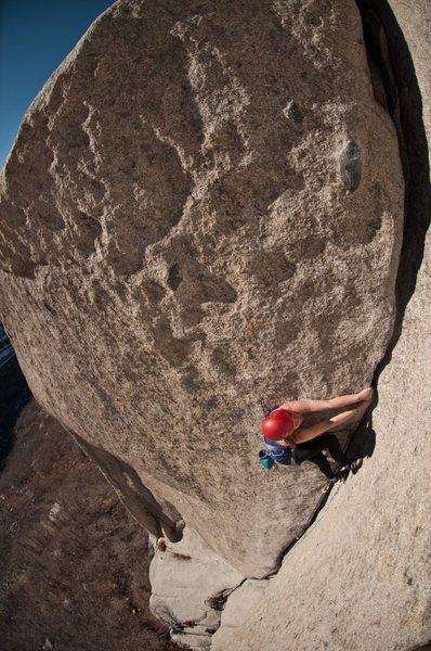 Rock Climbing Photo: Bongeater in January