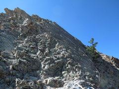 Rock Climbing Photo: Nearing the belay on Pitch #9.
