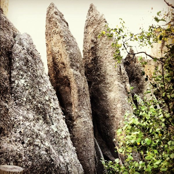 Rock Climbing Photo: Twin spires as viewed from Needles eye parking lot