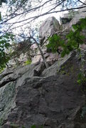 """Rock Climbing Photo: """"Modern Life is Rubbish"""" route obscured ..."""