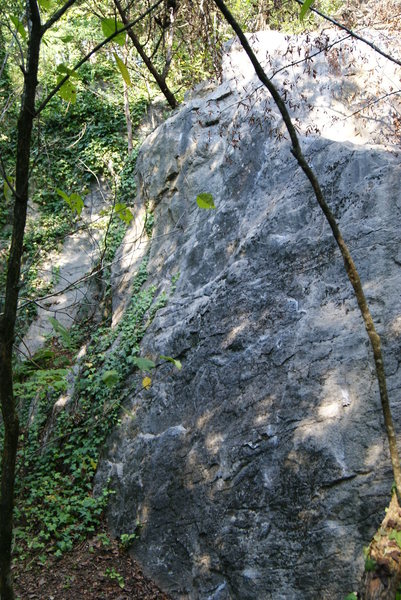 Best climb is straight up the middle, start on crimp underclings with bad feet on slippery ledge. move up slowly to crimp ledge. Dont use the jug ledge to right get some high feet. v1 maybe v2