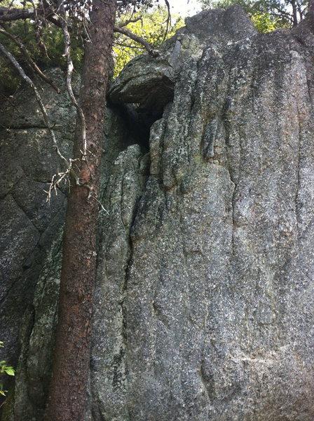 Rock Climbing Photo: POA