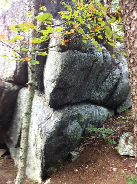 Rock Climbing Photo: Megatron