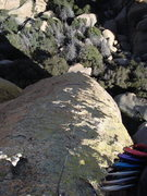 Rock Climbing Photo: From the top
