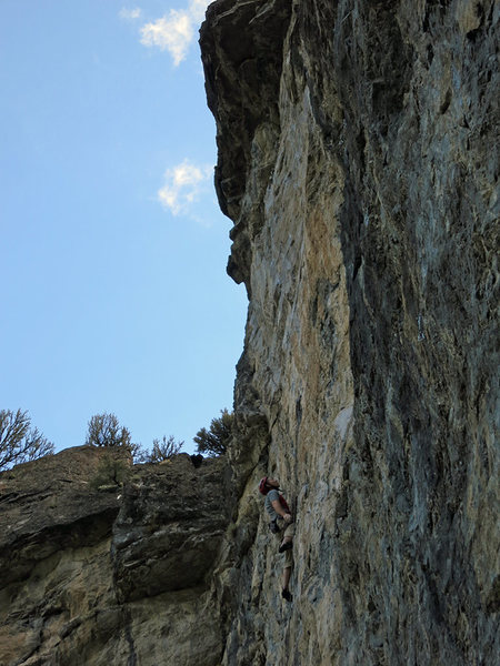 "Rock Climbing Photo: Milking the ""ok"" rest a few moves before..."