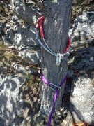 Rock Climbing Photo: New rappel anchor replacing the sling salad that w...