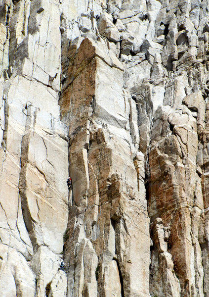 "Rock Climbing Photo: Leading p3 of ""Better Red Than Dead"" 5.1..."