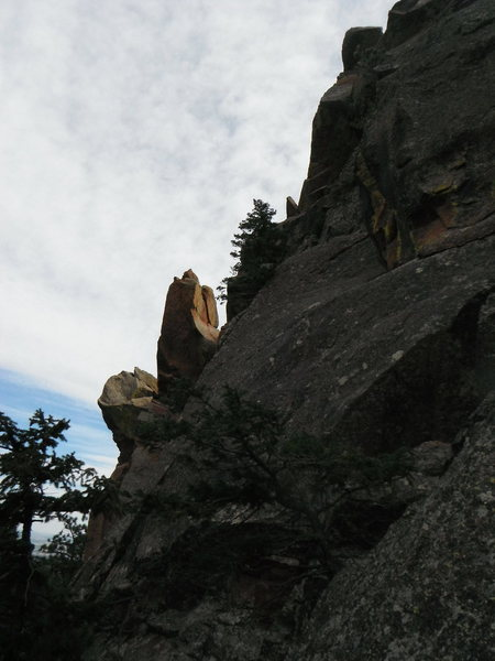 Rock Climbing Photo: Bonsai climbs the left side of this photo, Cougar ...