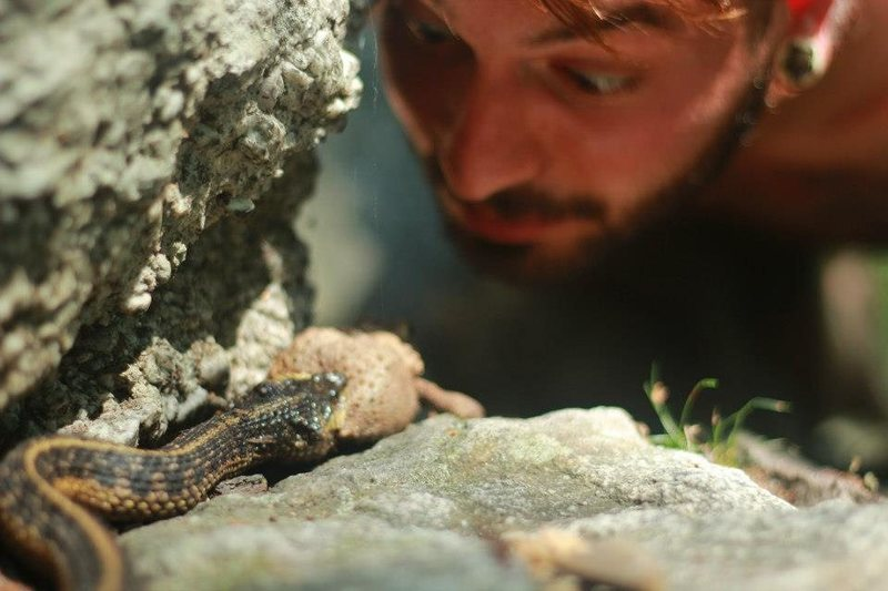 Rock Climbing Photo: Quite a weird sight... a snake eating a toad!