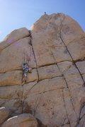 Rock Climbing Photo: Heidi heading up Wild Wind