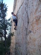 Rock Climbing Photo: 2-Finger Grip of Attention - Cactus Rose Limestone...