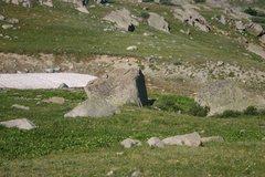 Rock Climbing Photo: One nice looking slab!