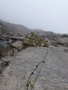 Rock Climbing Photo: At the pin anchor