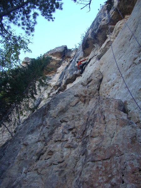 Rock Climbing Photo: Cali Terveen fights The Depression, 5.11d.