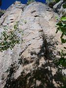 Rock Climbing Photo: Great face for long-reaching primates!