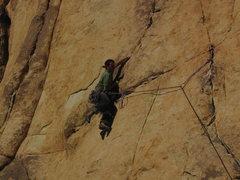 Rock Climbing Photo: cakewalk