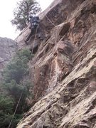 Rock Climbing Photo: P2 5.10 roof crux above the ditreedral.  JS sends!...