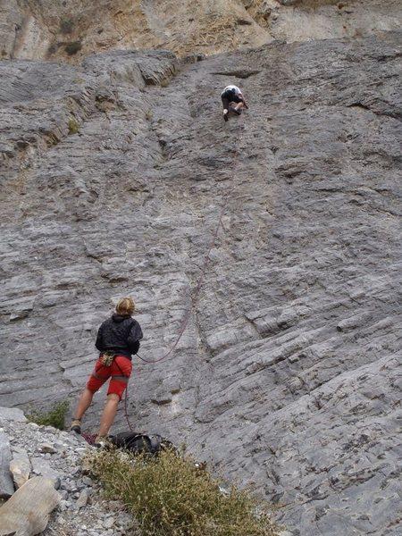Rock Climbing Photo: leading Snufillupigous at Sesame Street