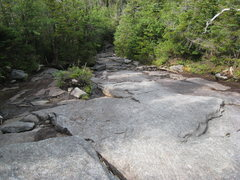 Algonquin slide/trail near summit