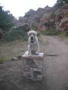 Rock Climbing Photo: Hugo the dog welcomes you to Penitente!