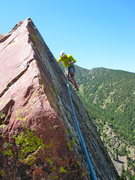 Rock Climbing Photo: Best Summit In Eldo