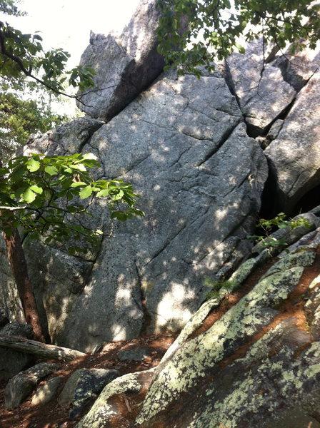 Rock Climbing Photo: TMI