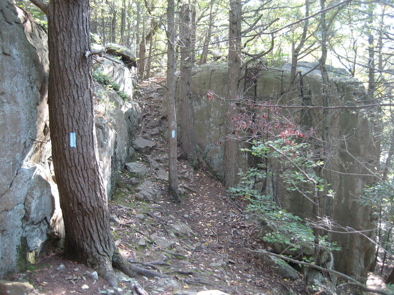 Hiking south from Rt. 6, the Metacomet trail goes over the crag. Descend right at this point for crag base.
