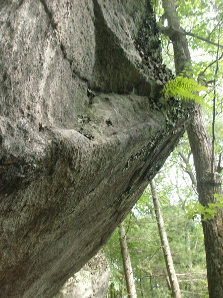 Rock Climbing Photo: Here's the fin.