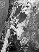 Rock Climbing Photo: Photo taken from Chris Hubbard's website (climbing...