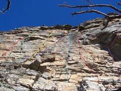 Rock Climbing Photo: Seasonal bird closure area topo.  This is a good c...
