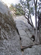Rock Climbing Photo: Start of Aunt Fanny's Pantry route.   Look for the...