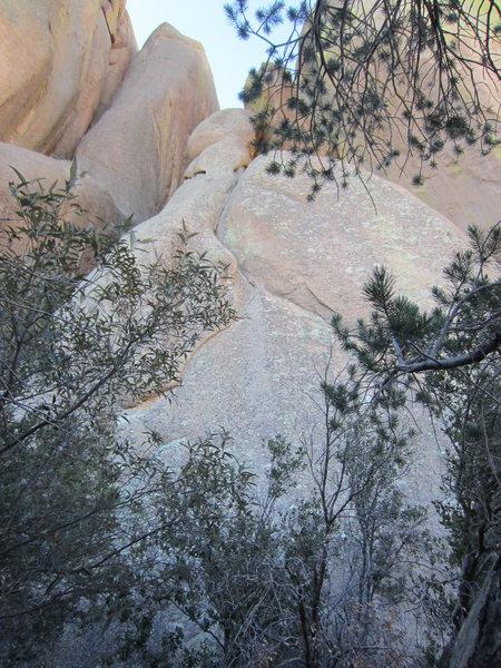 Rock Climbing Photo: Pitch 1 through the trees