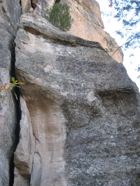 Middle section and intermediate ledge.