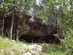 Rock Climbing Photo: Bearadactyl Pups up on the Hidden Boulder