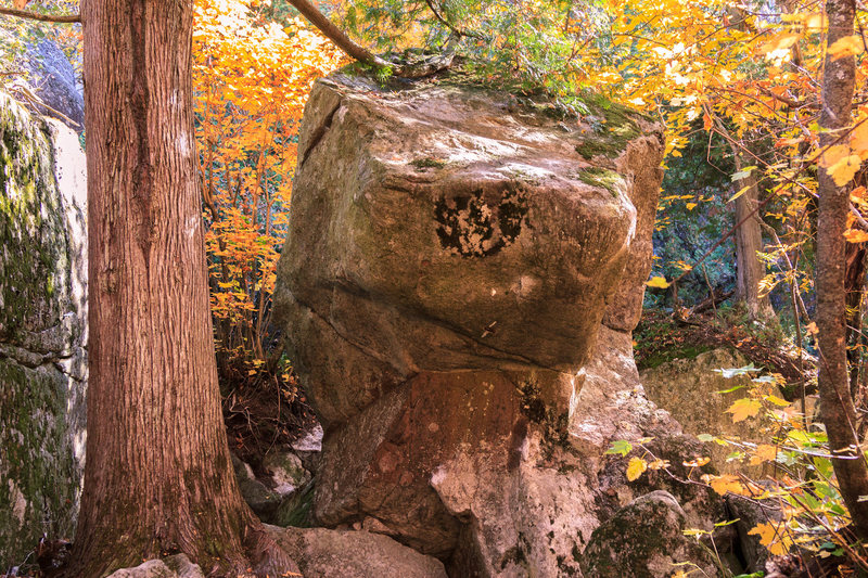 Dragon Head boulder.